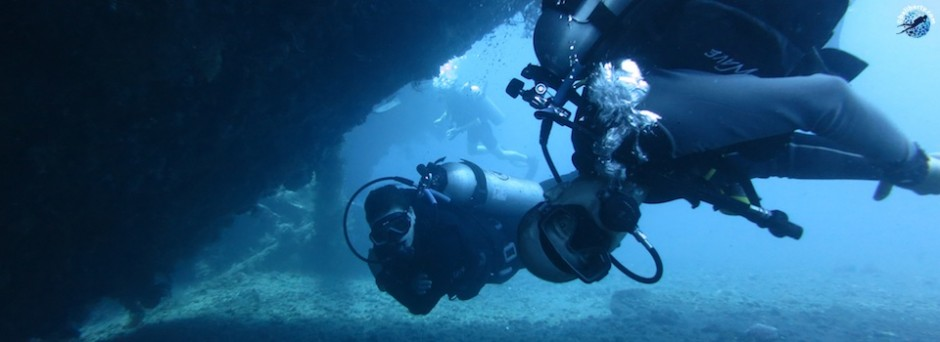 padi cours specialty