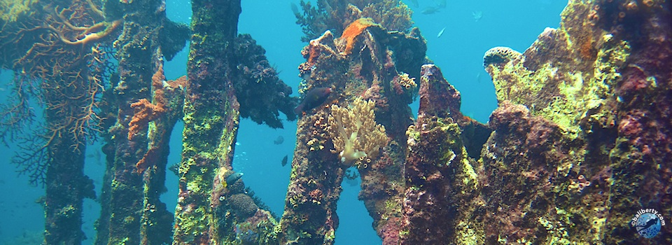 bali-amed-diving-plongee-lipahbay-06