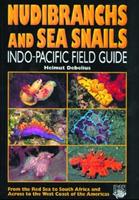 nudibranchs-sea-snails-by-helmut-debellius